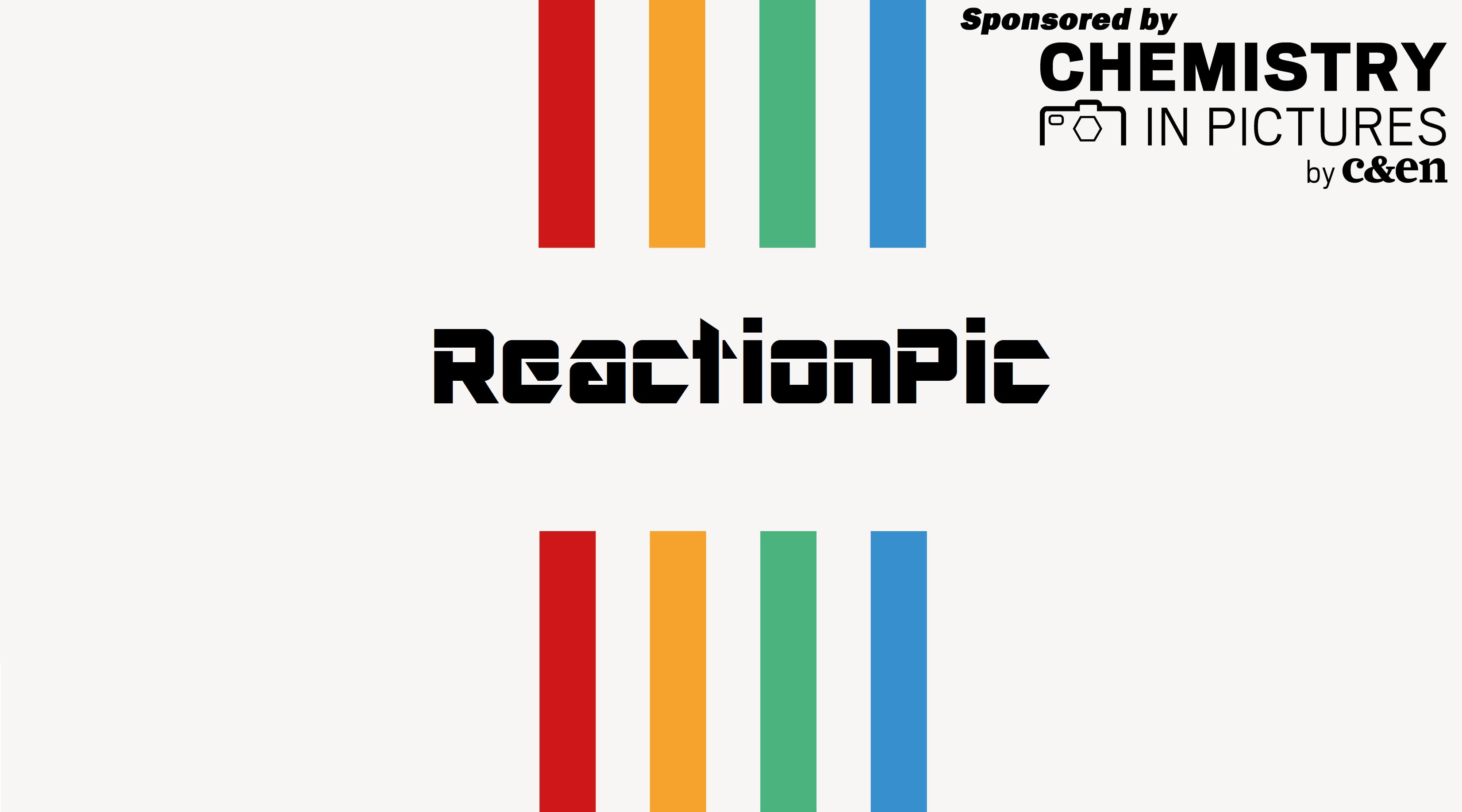 reactpic